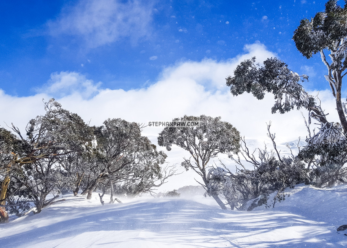 """Clearing blue skies // Charlotte Pass, Australia"" stock image"