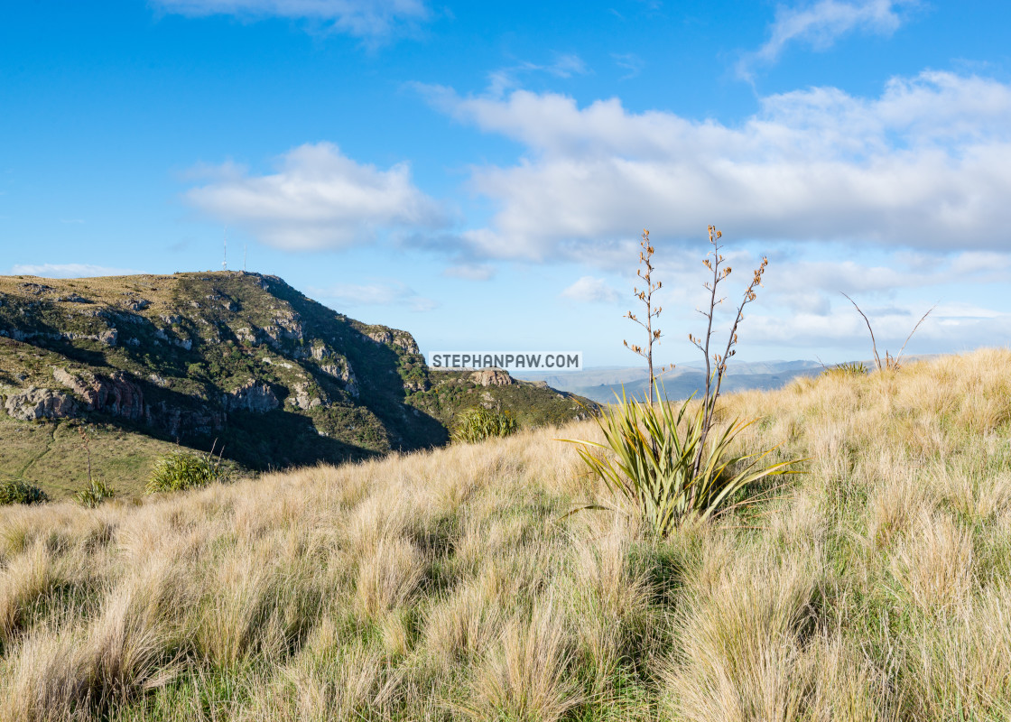 """Mount Pleasant // Christchurch, New Zealand"" stock image"
