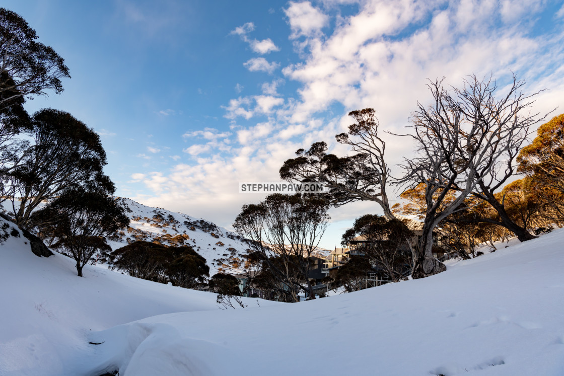 """A different perspective of Charlotte Pass // Kosciuszko National"" stock image"