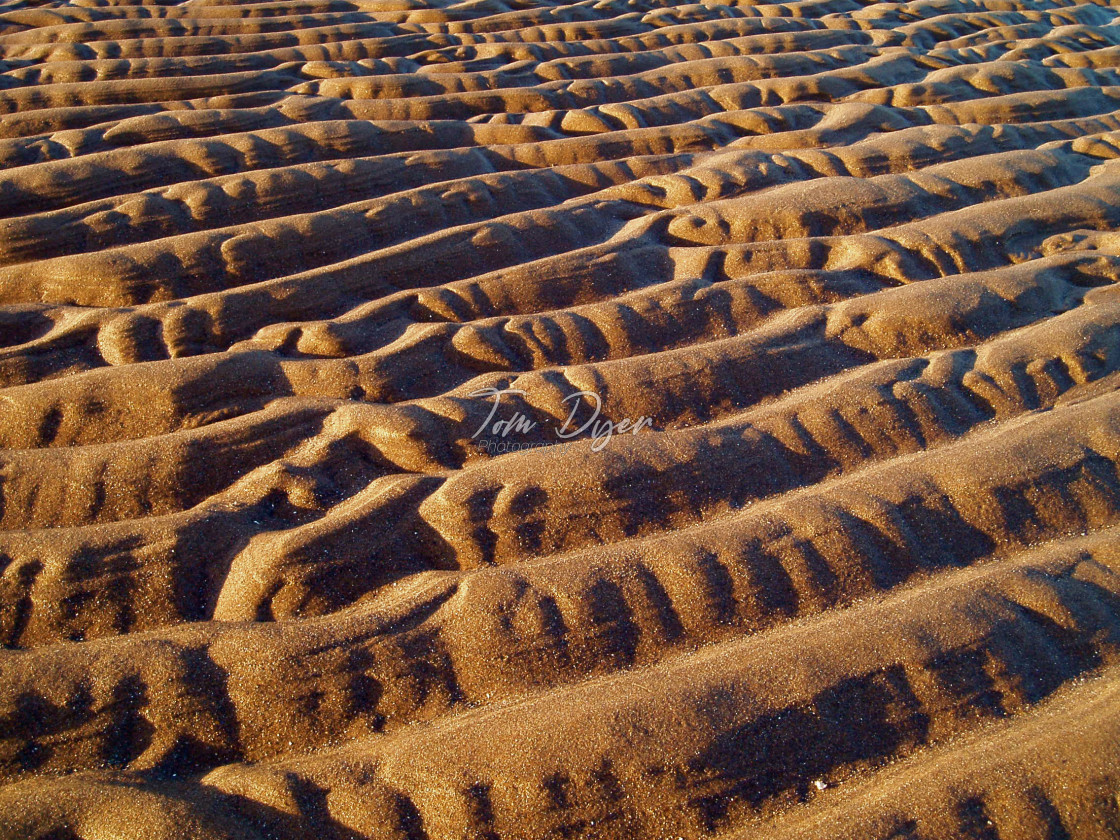 """Ripples in a Sandy Beach"" stock image"