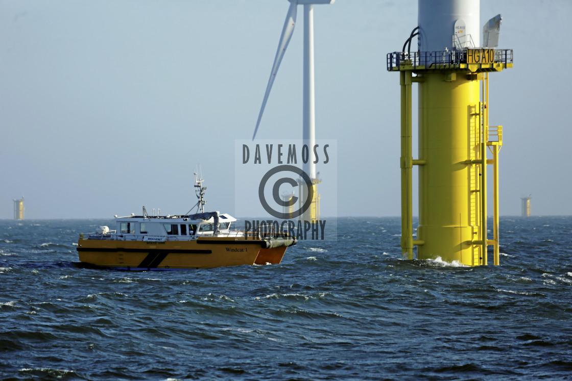 """Wind turbines Humber Gateway wind energy"" stock image"