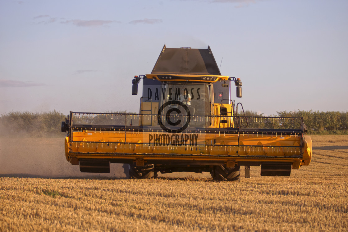 """""""Combine Harvesters at work harvest time on Farm"""" stock image"""