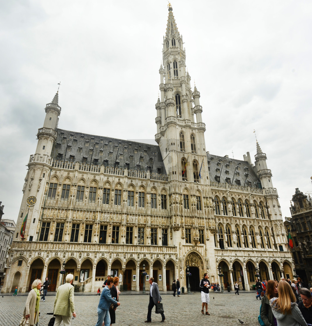 """Brussels Town Hall"" stock image"