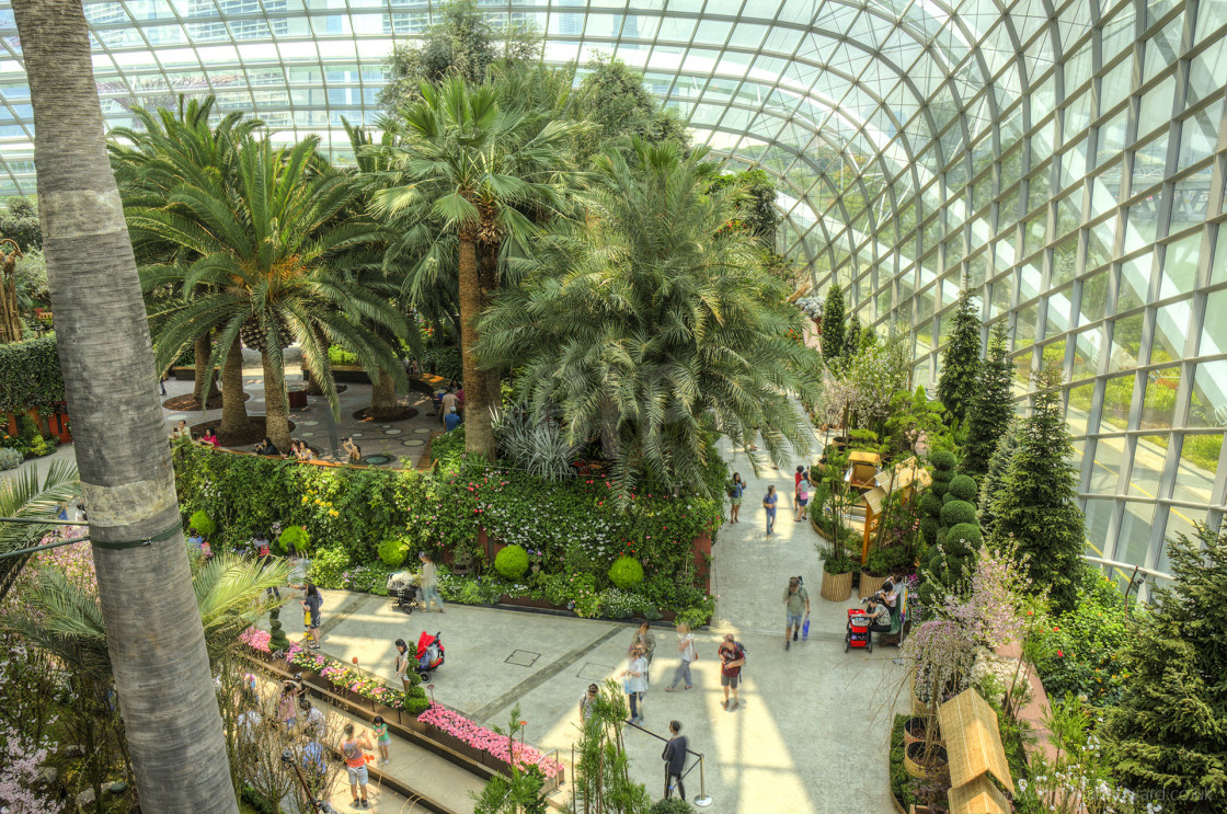 """Flower Dome, Singapore"" stock image"