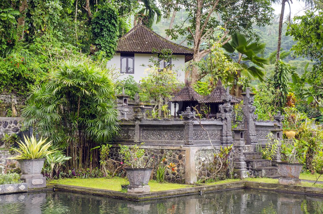 """Tirta Gangga, Bali, Indonesia"" stock image"