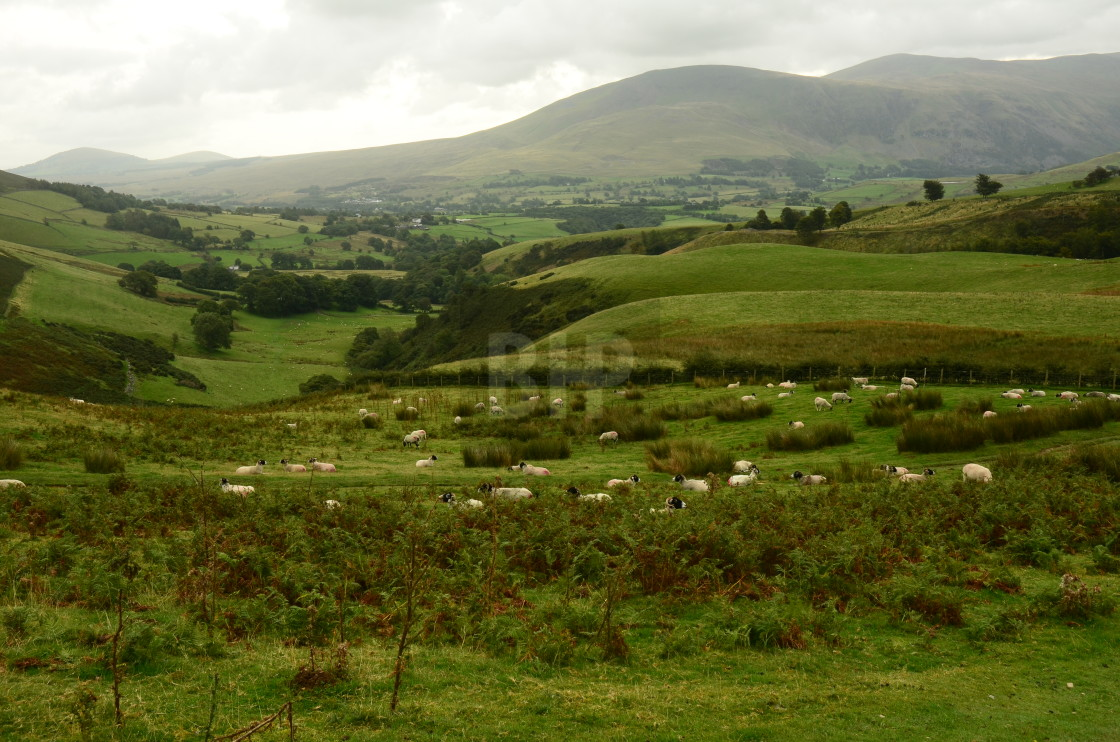 """Lake District"" stock image"