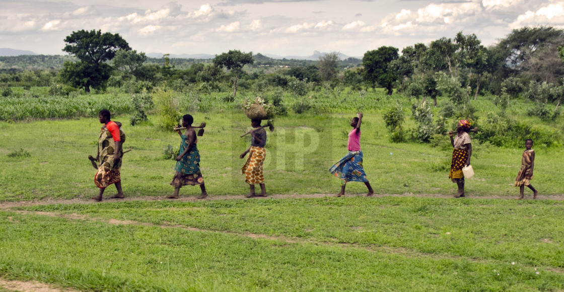 """Malawian Women Walking"" stock image"