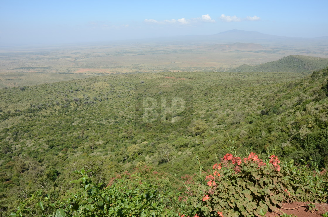 """Great Rift Valley, Kenya"" stock image"