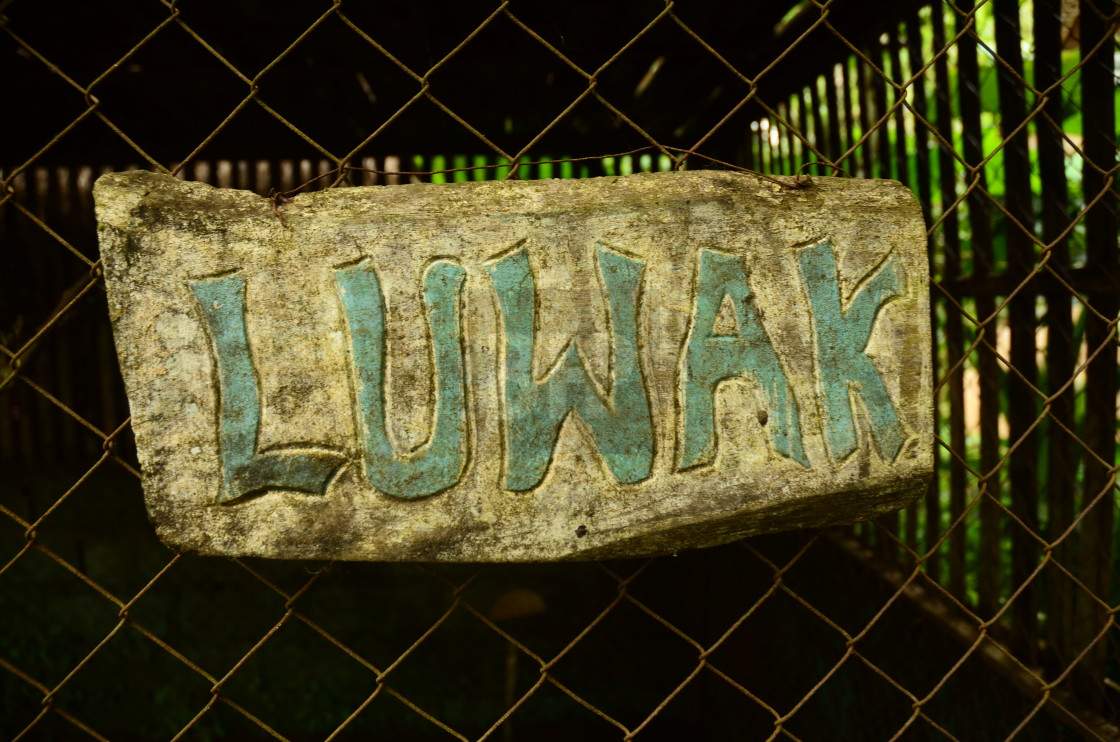 """Luwak Coffee Sign"" stock image"