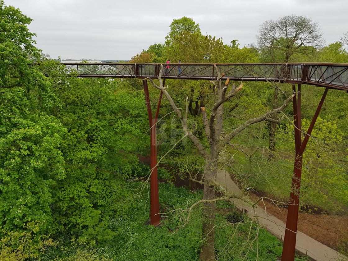 """""""Treetop Walkway, Kew Gardens, England"""" stock image"""