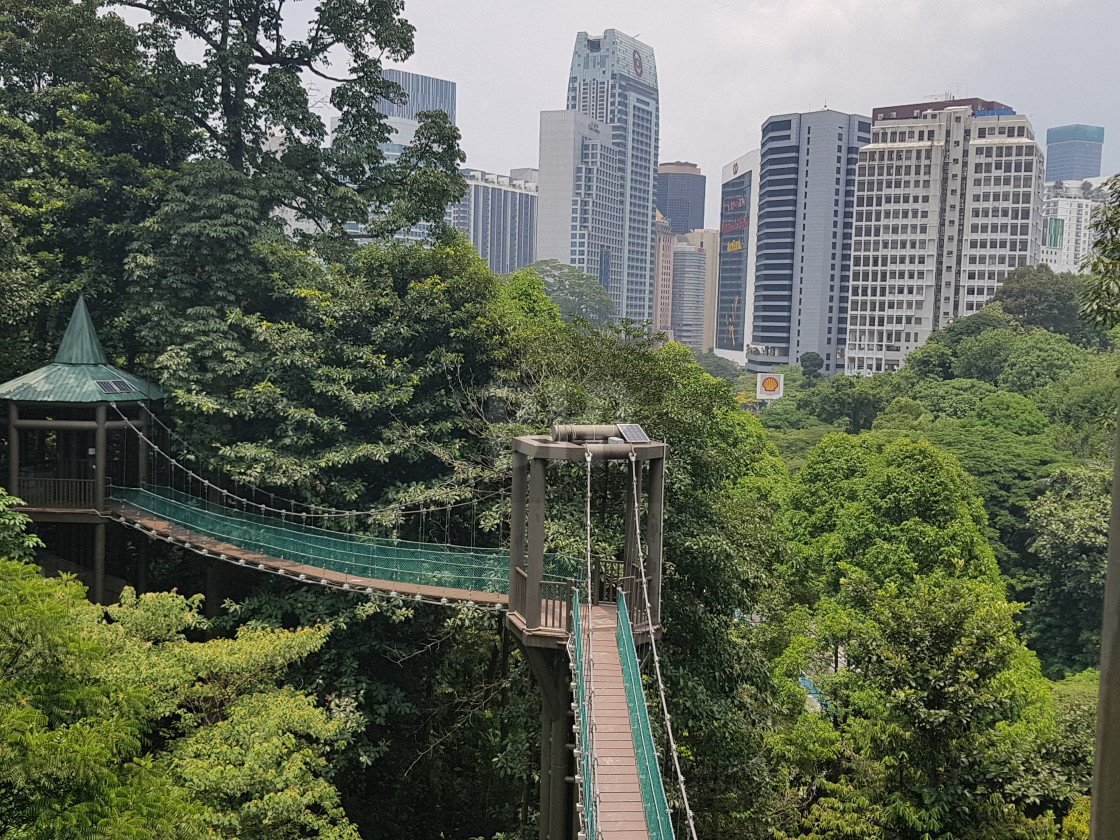 """KL Forest Eco Park, Malaysia"" stock image"