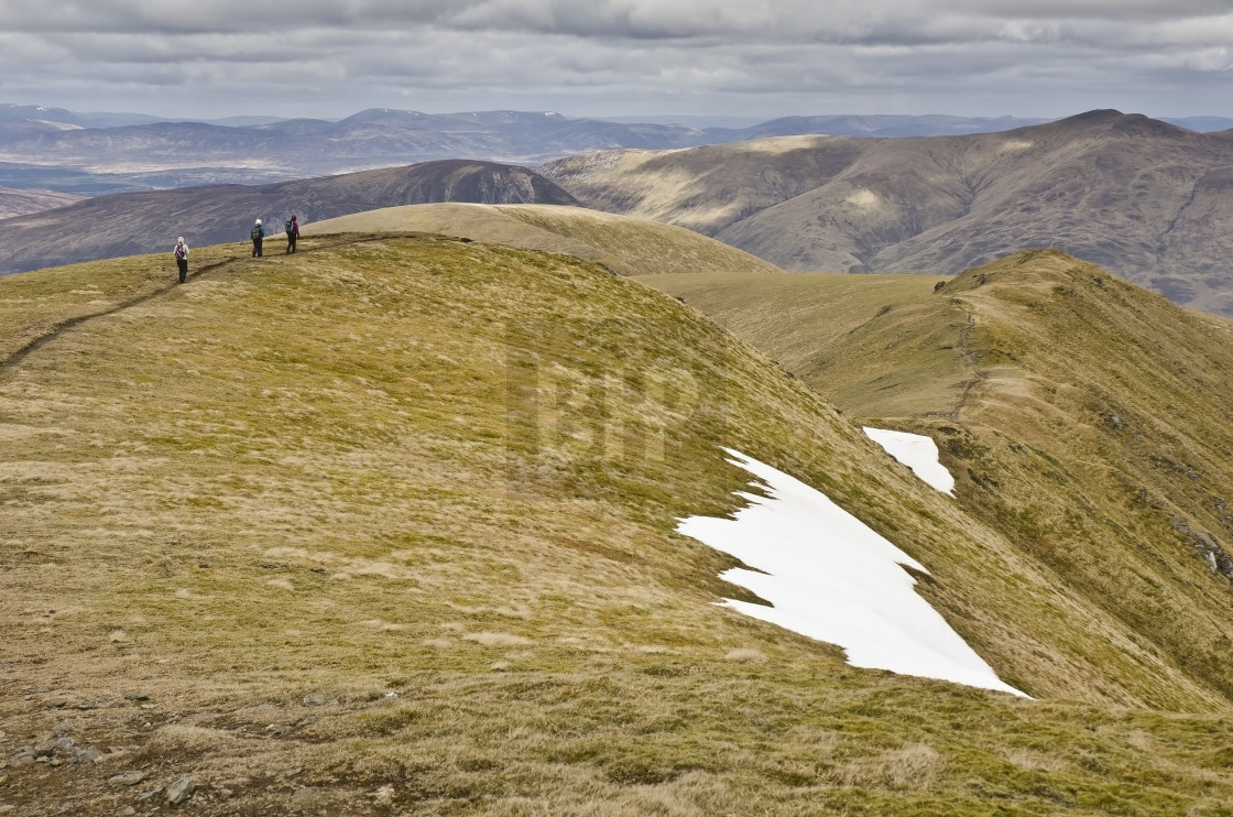 """Meall Corranaich Summit Ridge"" stock image"
