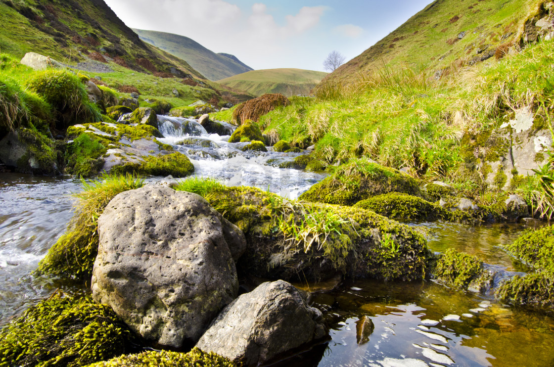 """Alva Glen, Scotland"" stock image"