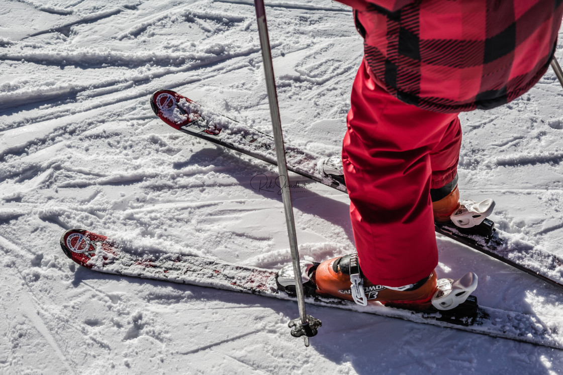"""""""Young Ski"""" stock image"""