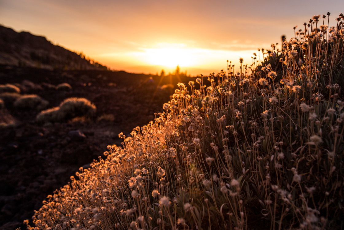 """""""Sunset wash"""" stock image"""
