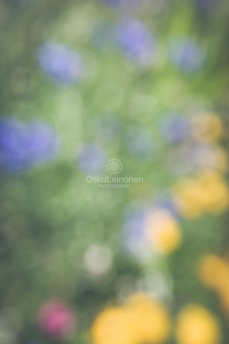 """Abstract Flowers V (Tiny)"" stock image"