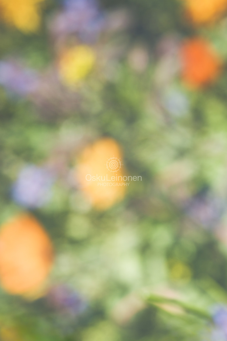 """""""Abstract Flowers XIII (Orange And Yellow)"""" stock image"""