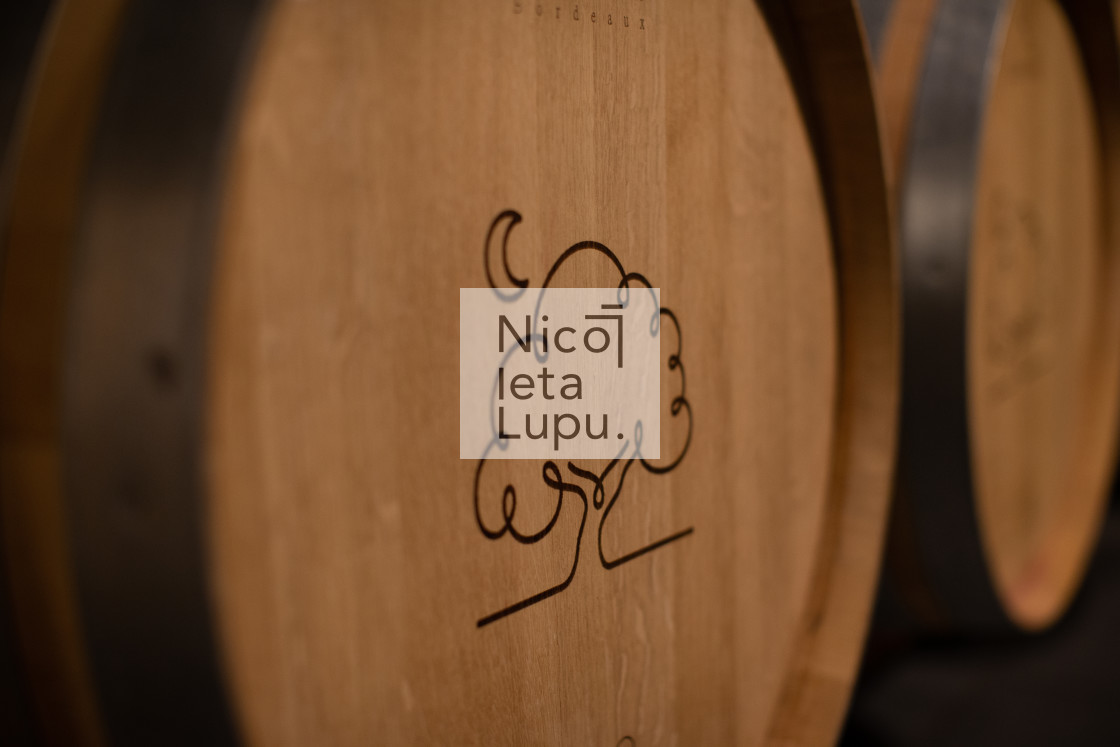 """wine barrel"" stock image"