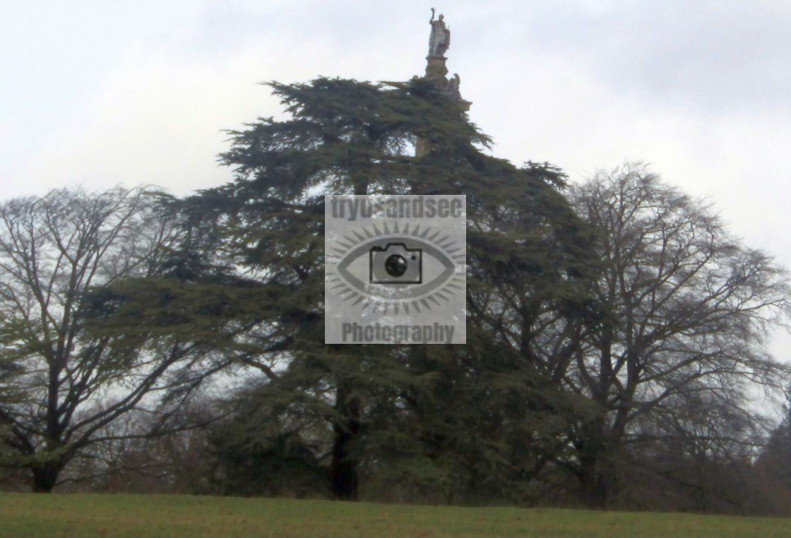 """""""Column of Victory above trees, Blenheim"""" stock image"""