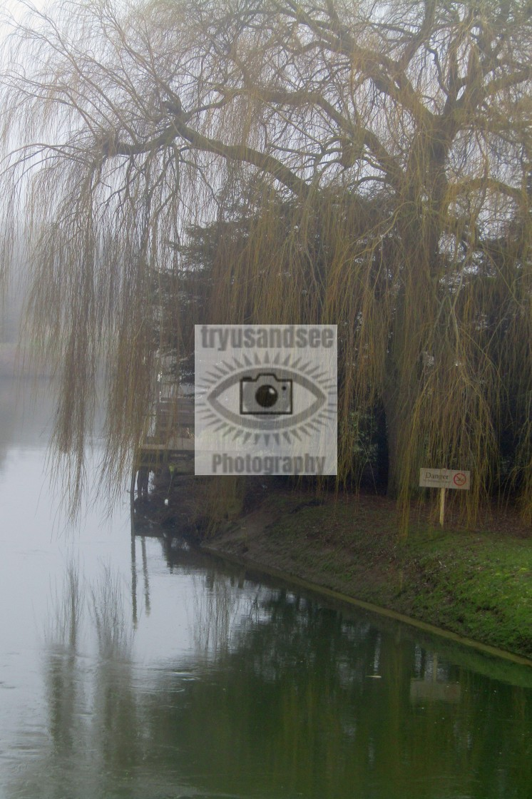 """""""River Thames, Oxfordshire in fog"""" stock image"""