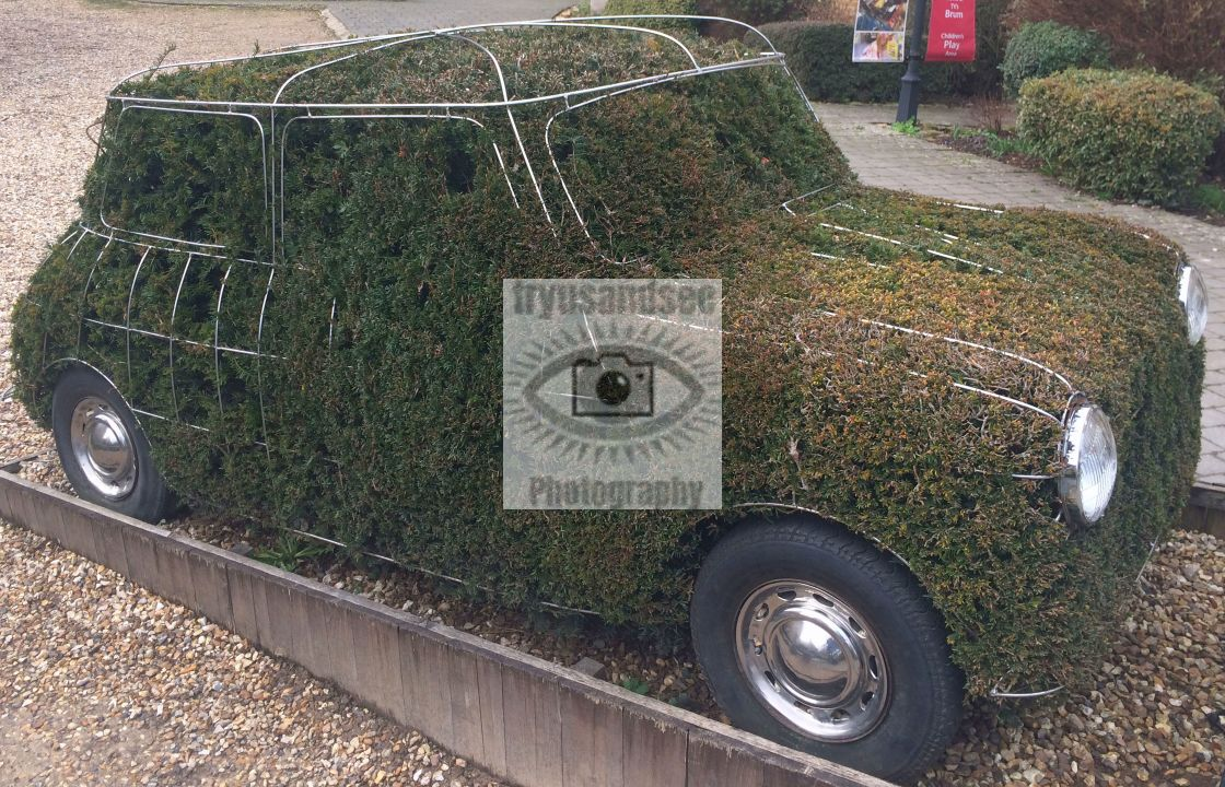 """Mini car metal frame in greenery"" stock image"