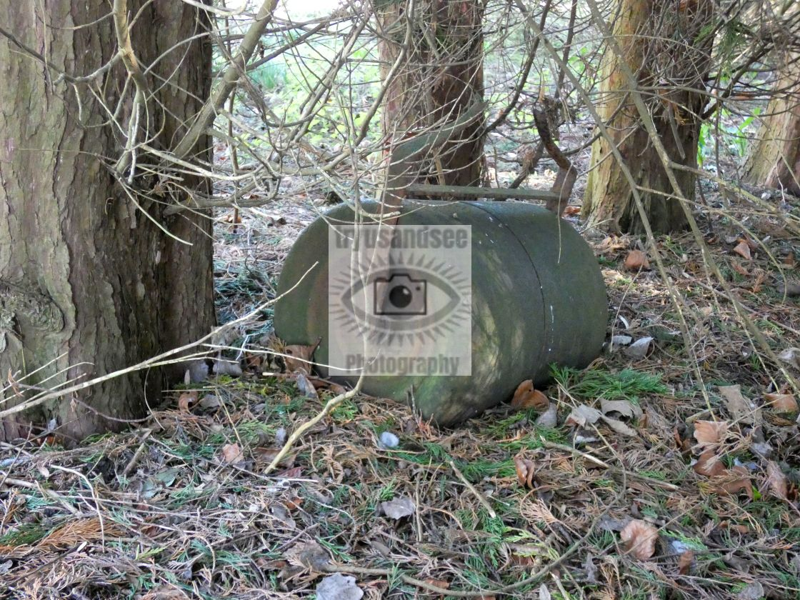 """""""Derelict ground roller in forest"""" stock image"""