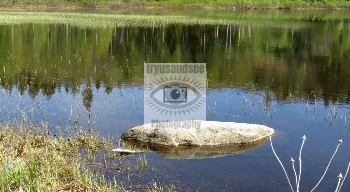 """""""Lake in Bjasta, Sweden"""" stock image"""