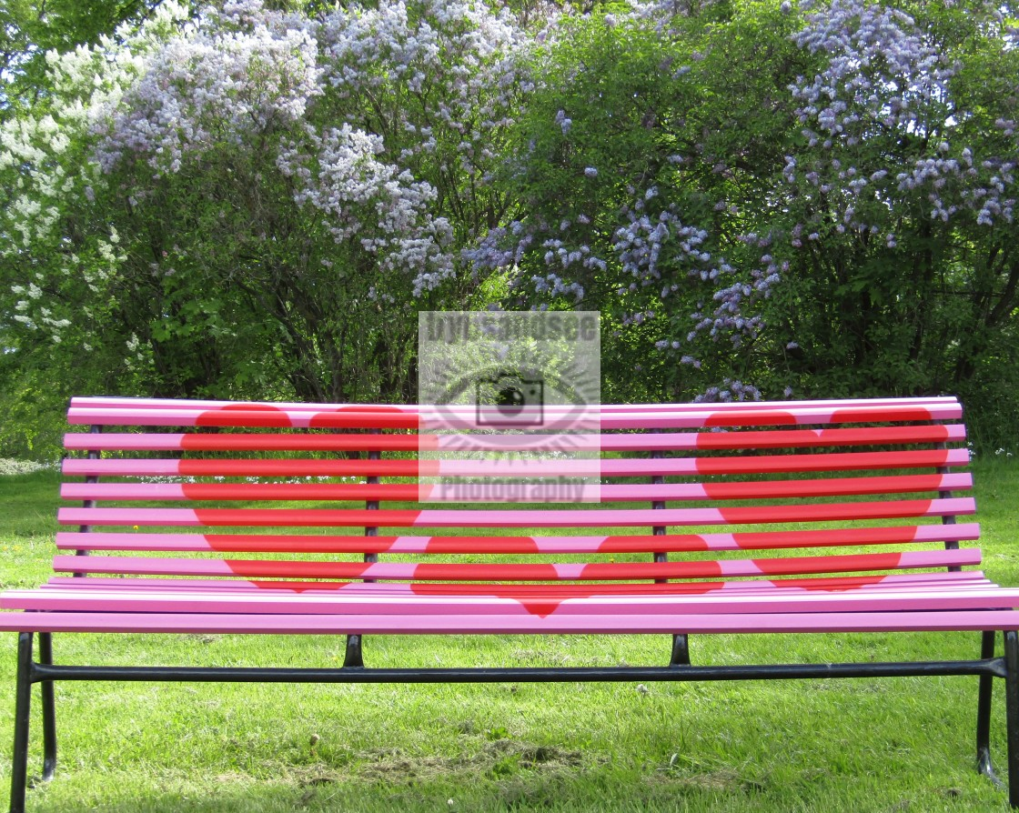 """""""Love bench in Trondheim"""" stock image"""