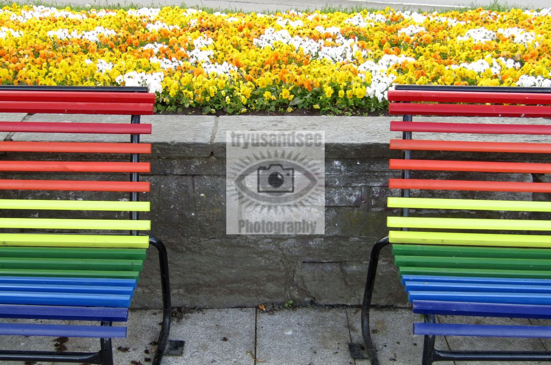 """""""Coloured benches in Trondheim"""" stock image"""