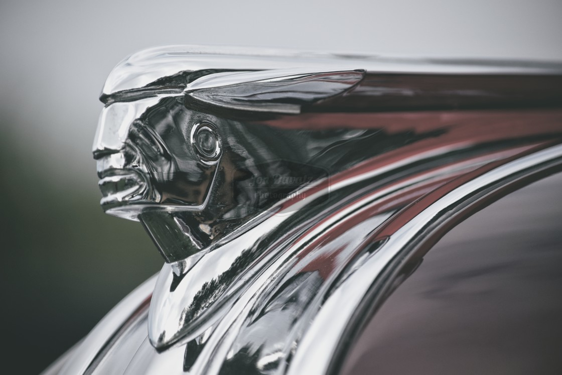 """Pontiac Hood Ornament"" stock image"
