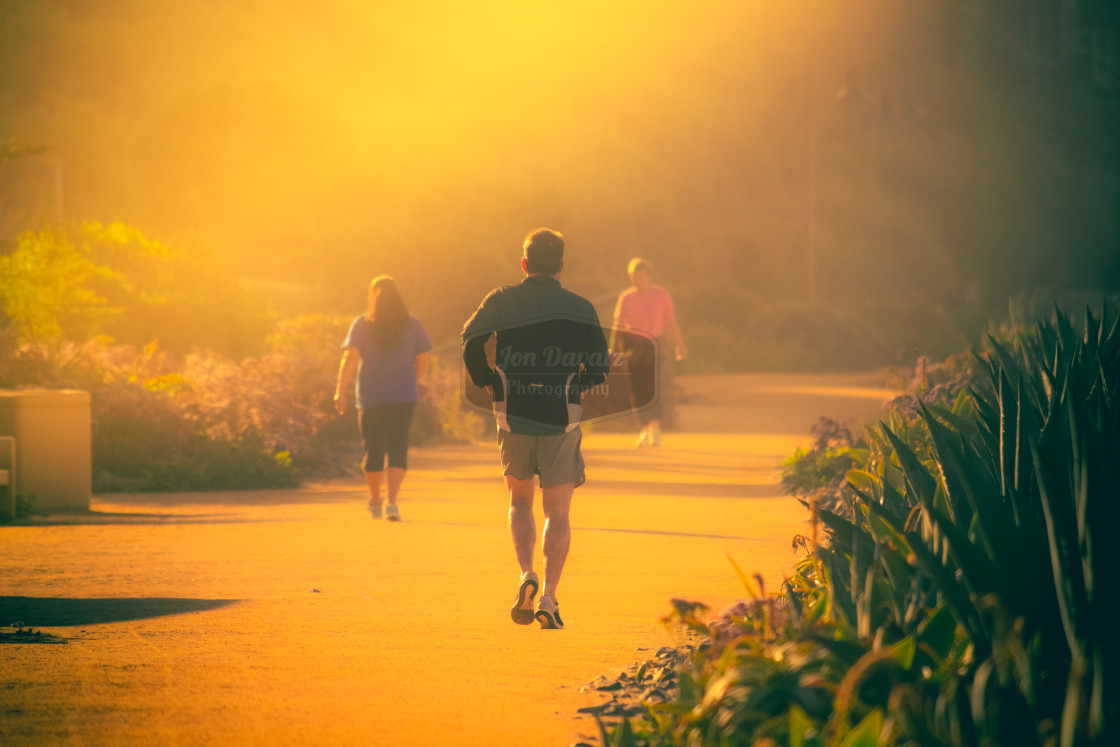 """Golden Hour"" stock image"