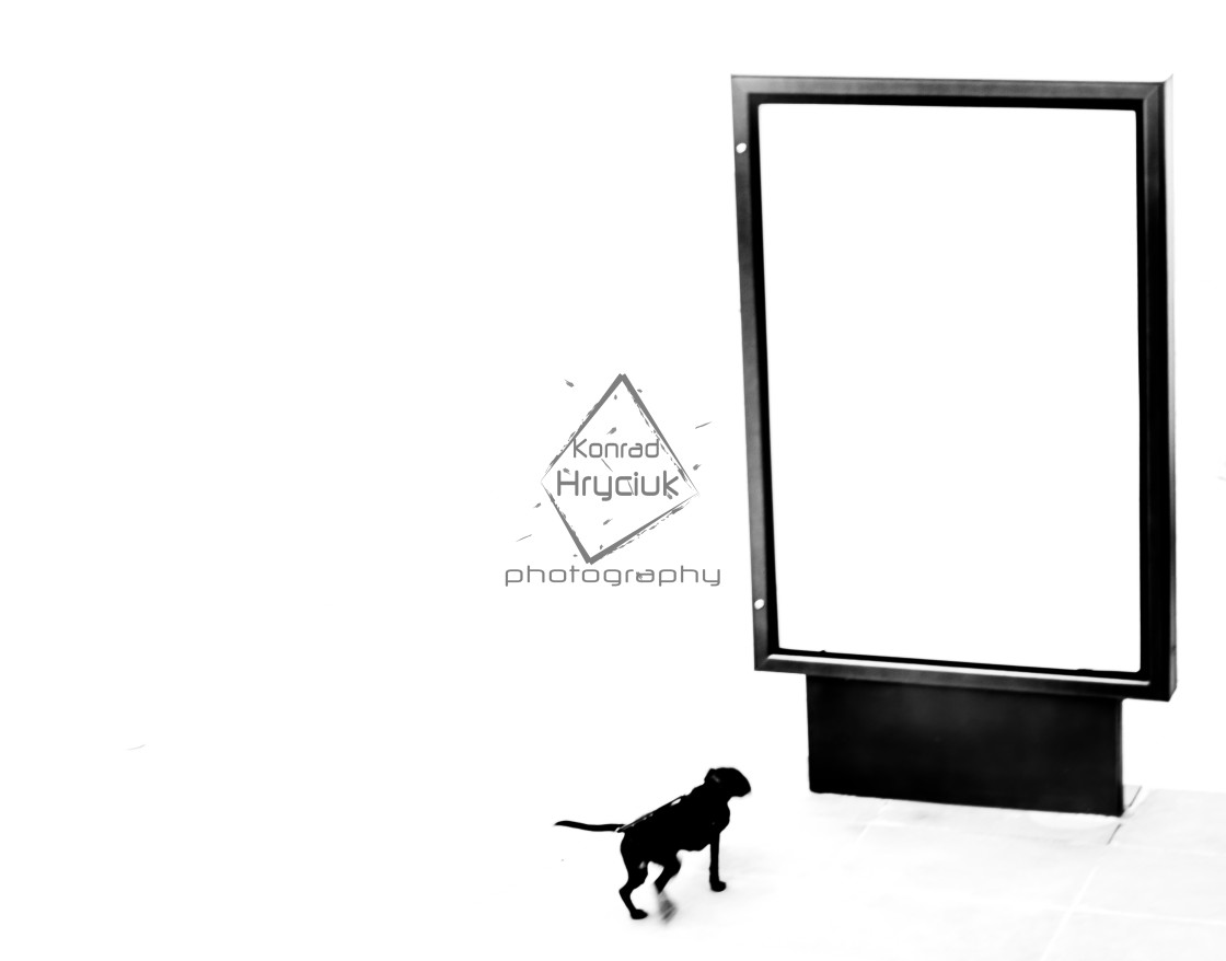 """dog's oblivion vol. 2"" stock image"