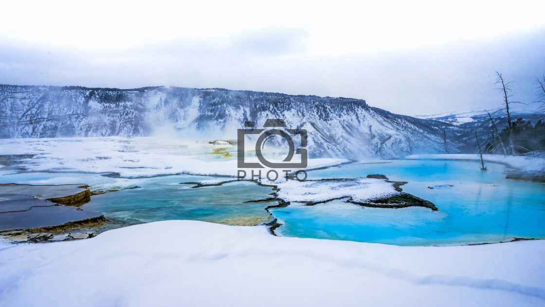 """Yellowstone Winter"" stock image"