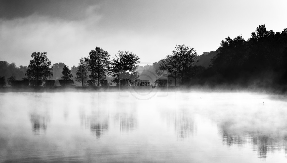 """Foggy reflection"" stock image"