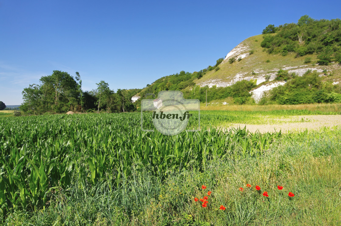"""""""French Vexin hills"""" stock image"""