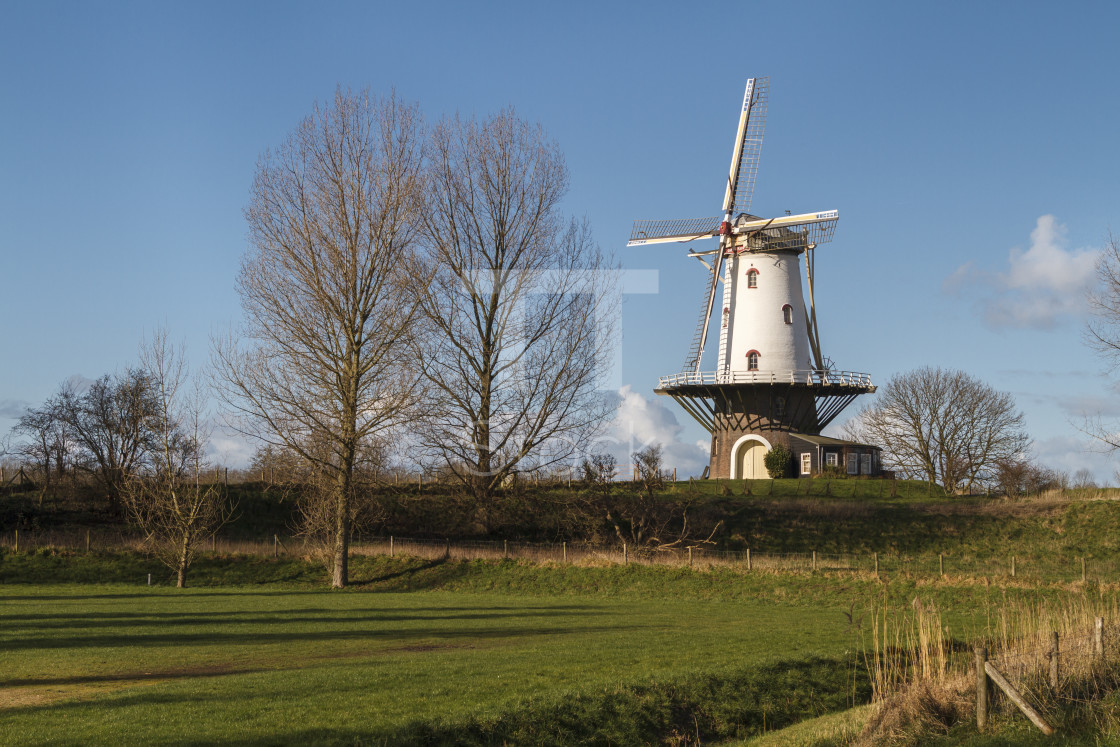 """White windmill in Veere 2"" stock image"