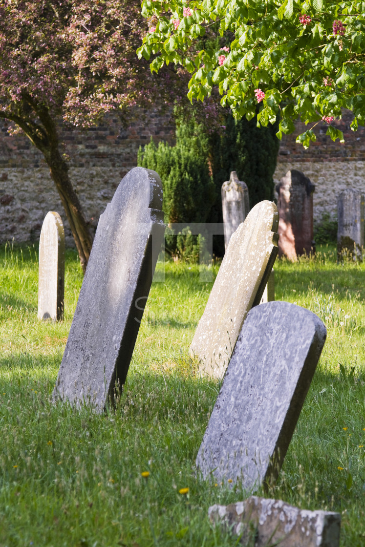 """Old gravestones in cemetery"" stock image"