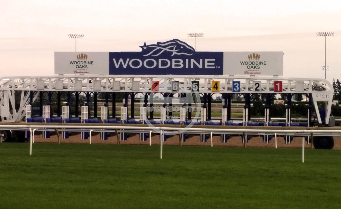"""""""Woodbine Racetrack"""" stock image"""