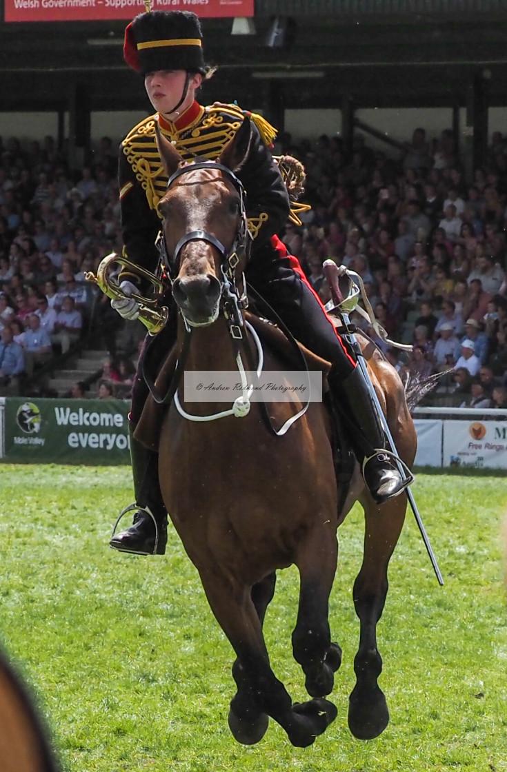"""Royal Horse Artillery (King's Troop) Rider"" stock image"