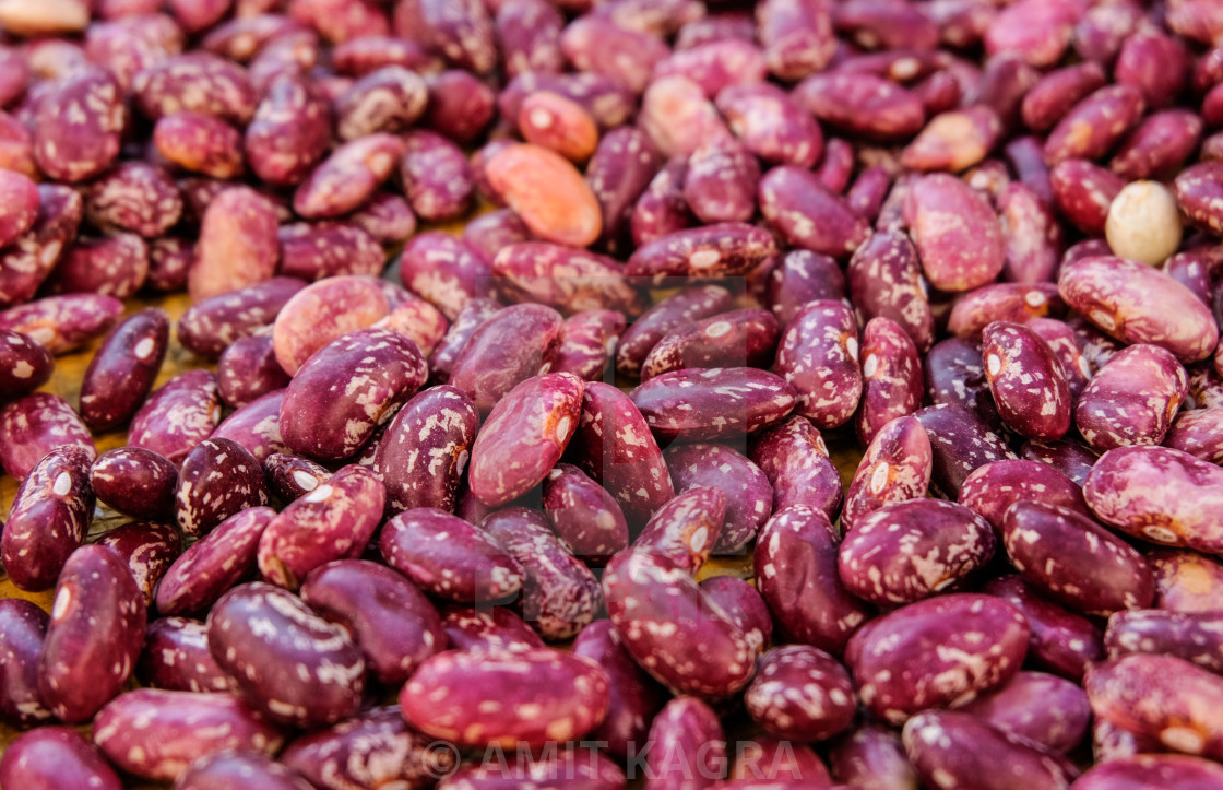 """""""Red Kidney Beans"""" stock image"""