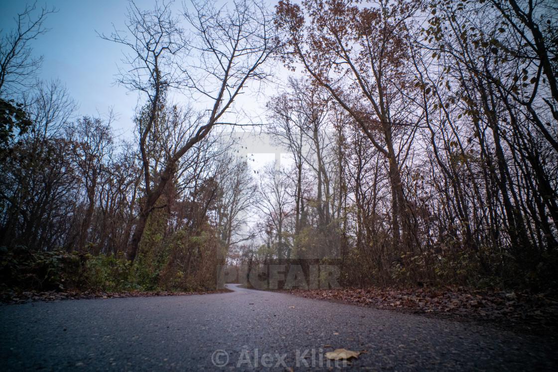 """""""Autumn Street"""" stock image"""