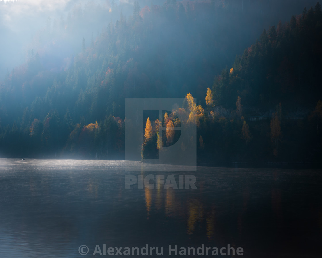 """""""A piece of autumn"""" stock image"""