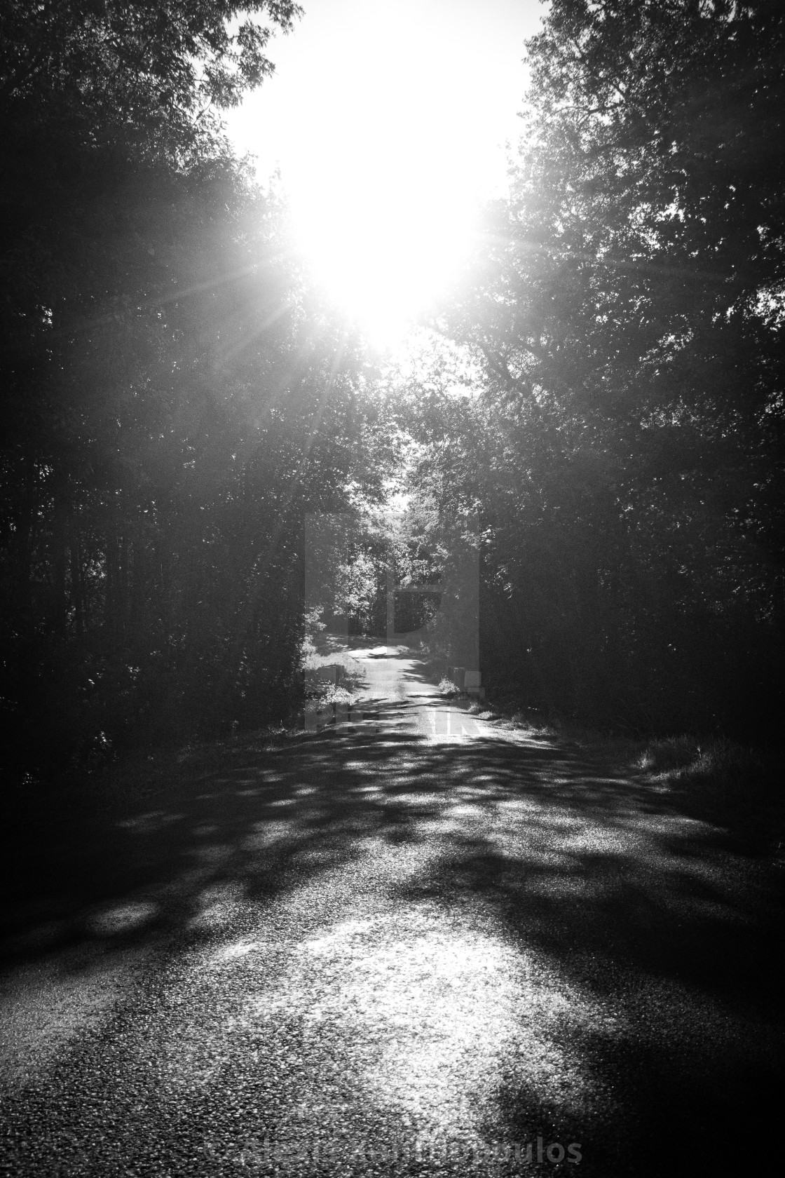 """""""Road to the Light"""" stock image"""