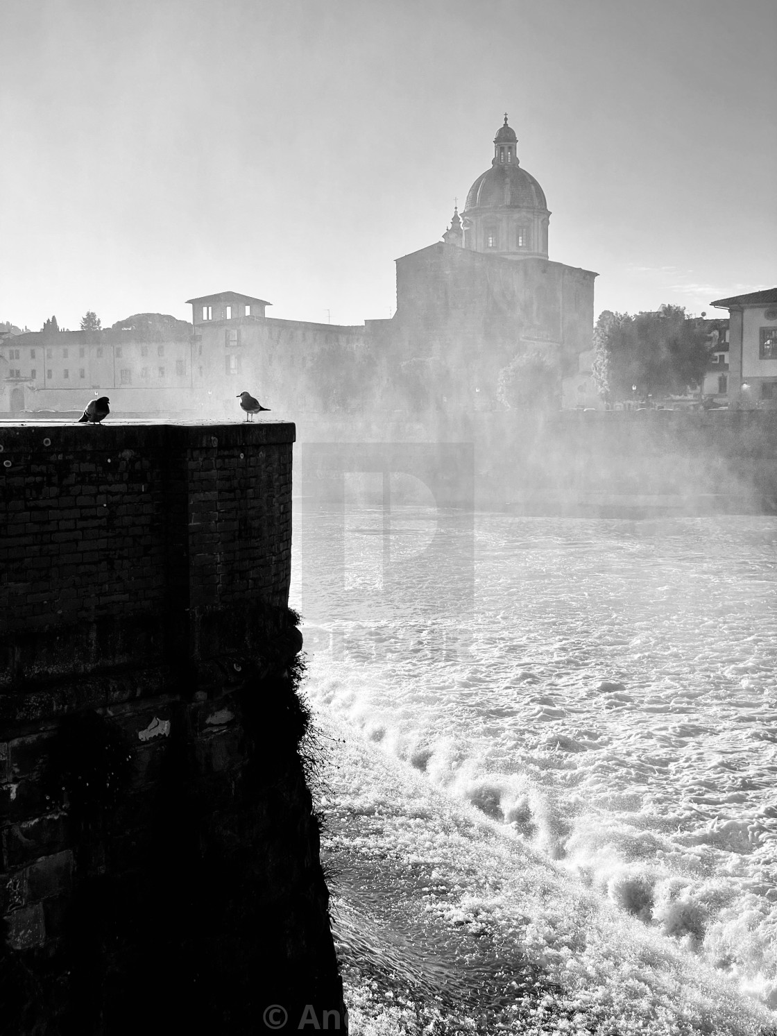 """San Frediano in Cestello, Firenze"" stock image"