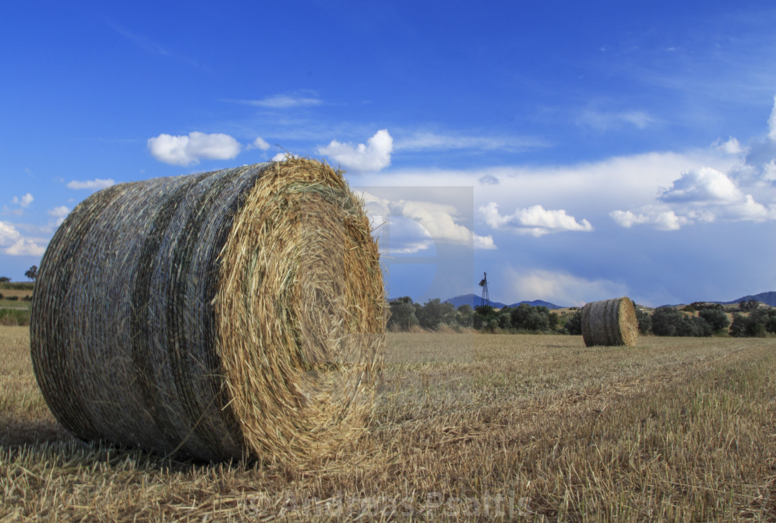 """Straw Bales On A Wheat Field"" stock image"