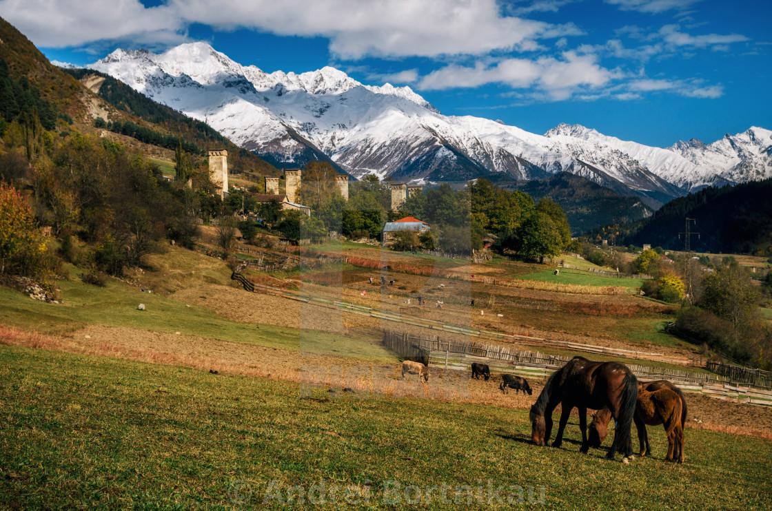 """Horses against Svan towers in Mestia, Svaneti, Georgia."" stock image"