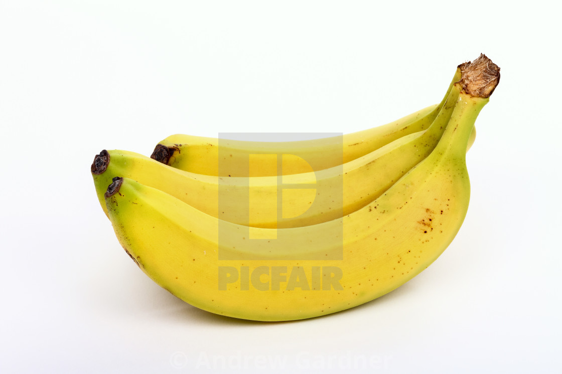 """Bunch of three bananas isolated on a white background"" stock image"