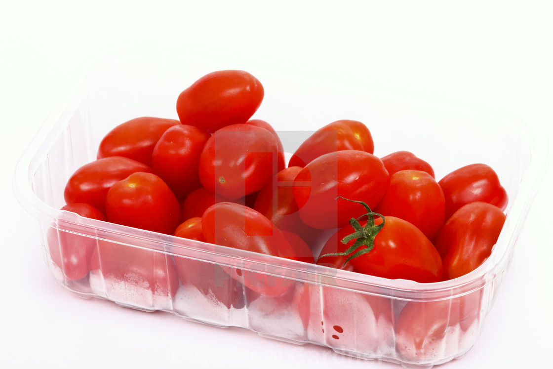 """Baby plum tomatoes in a plastic punnet isolated on a white background"" stock image"