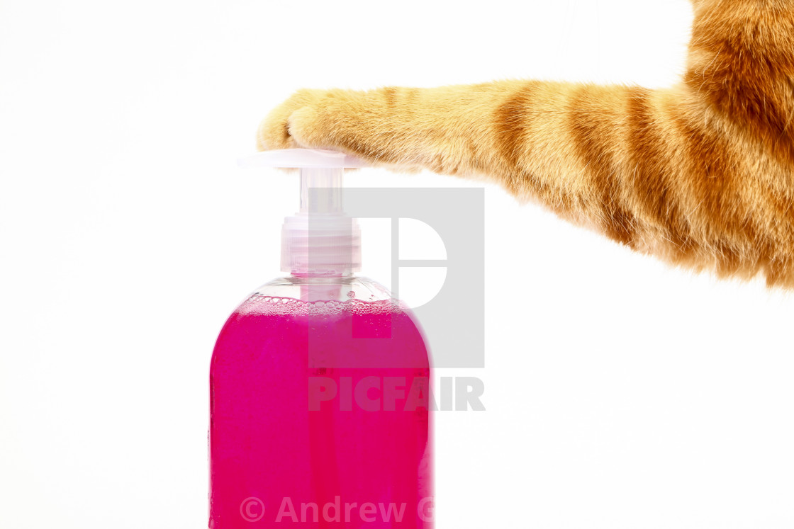 """""""Humorous washing hands concept"""" stock image"""