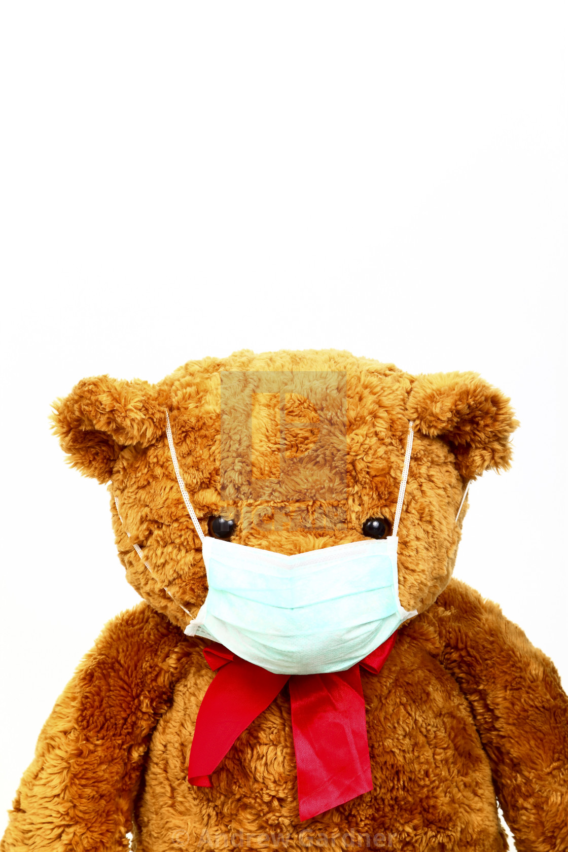 """Conceptual image of a teddy bear wearing a face mask to help stop the spread of covid 19"" stock image"